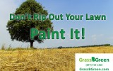Don't Rip Out Your Lawn: Paint it!