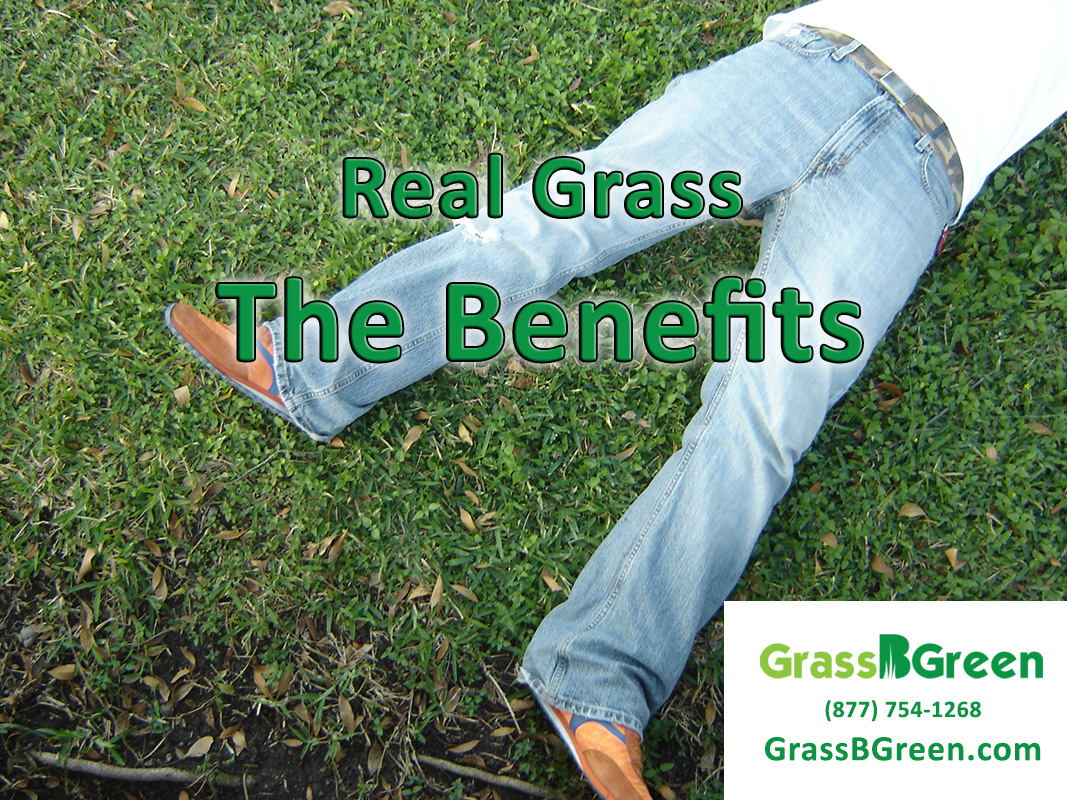 Real Grass The Benefits